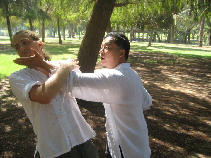 Zhou shifu, demonstrating an application on Tom, one of his Israeli students. HaYarkon Park, Tel-Aviv, Israel, August 2010.