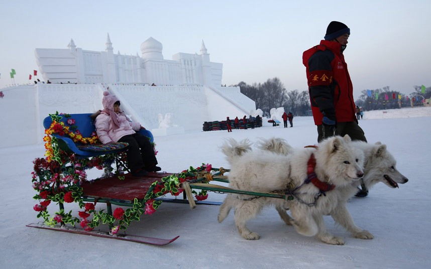 harbin-ice-festiva_2781715k