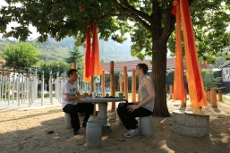 Tianmeng Shaolin Kung Fu Academy